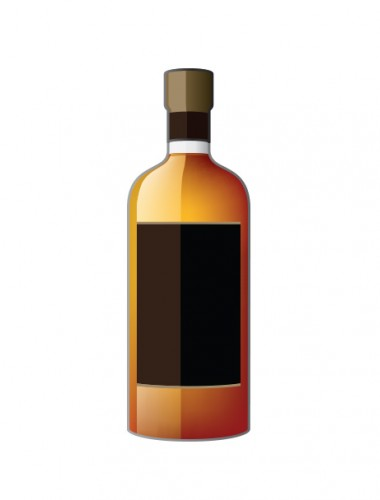Nikka 1998 Coffey Malt Whisky 12 Years Old Cask #133421